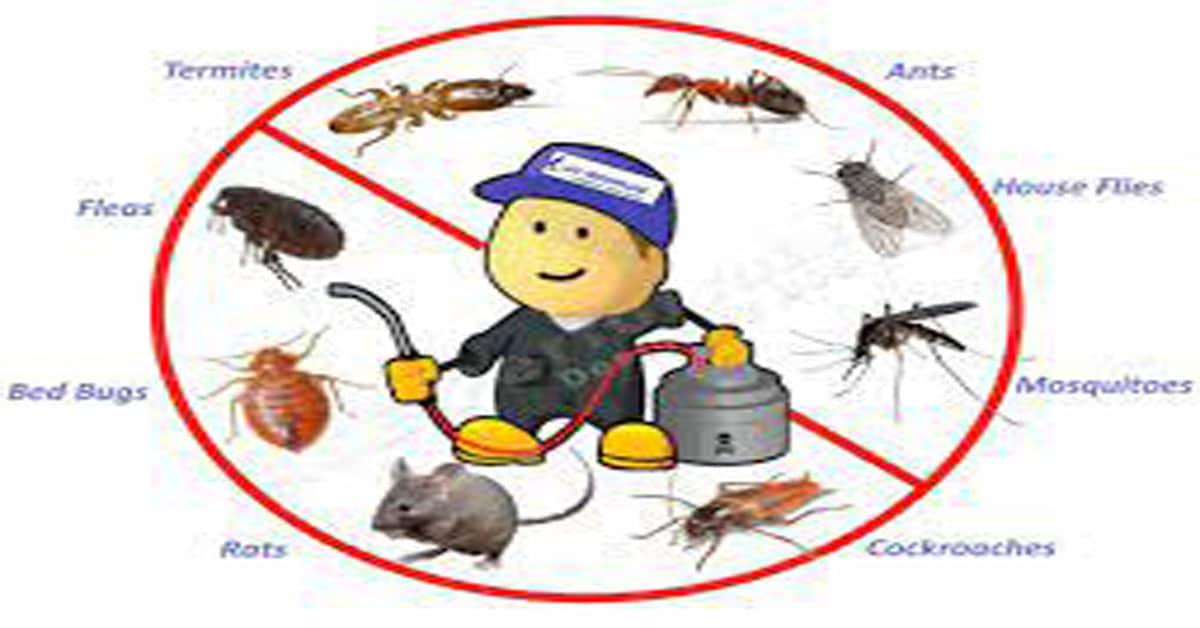 افضل شركة مكافحة حشرات بحريملاء