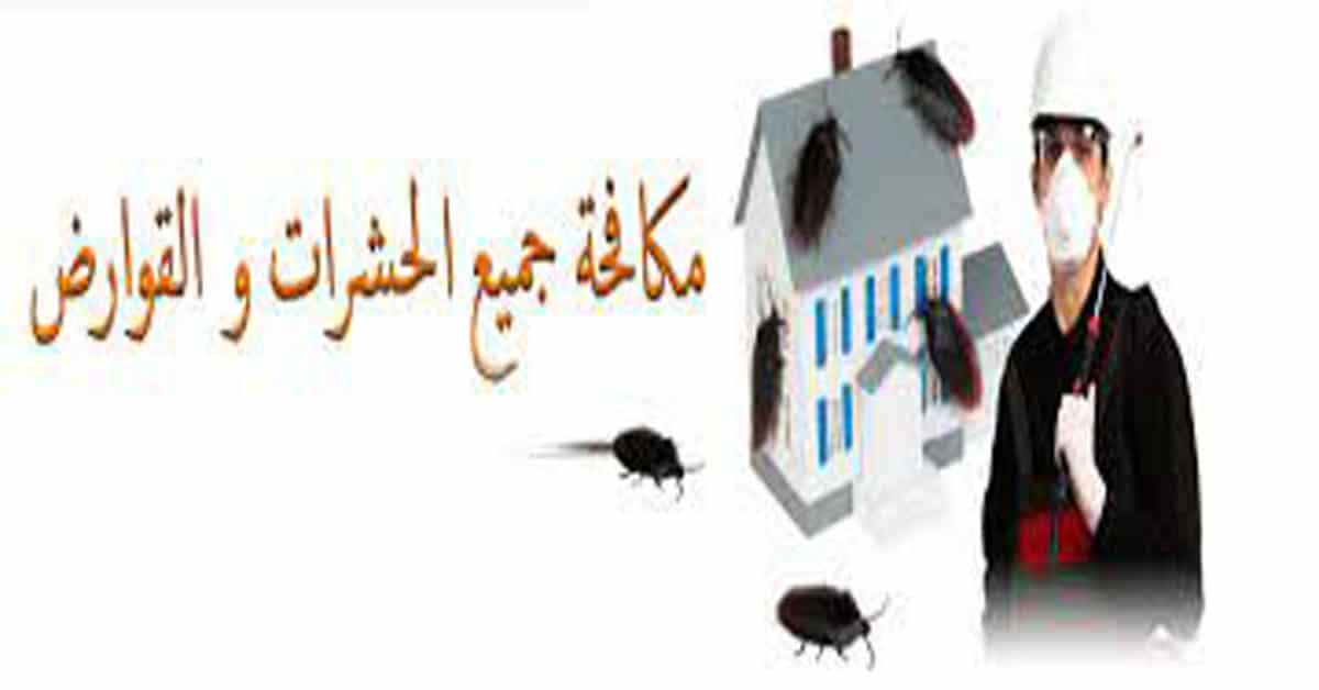 افضل شركة مكاتفحة حشرات بالدرعية